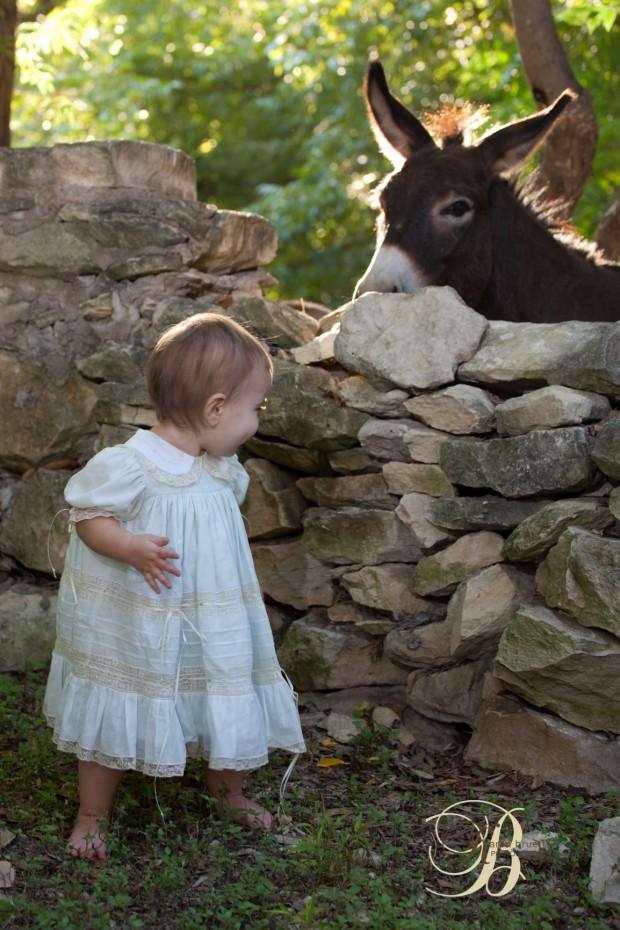 Littel Girl, miniature donkey