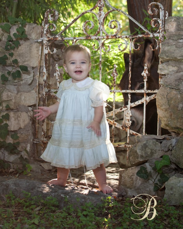 Little girl, minature donkey, sunrise, vintage dress, karen bruett photography