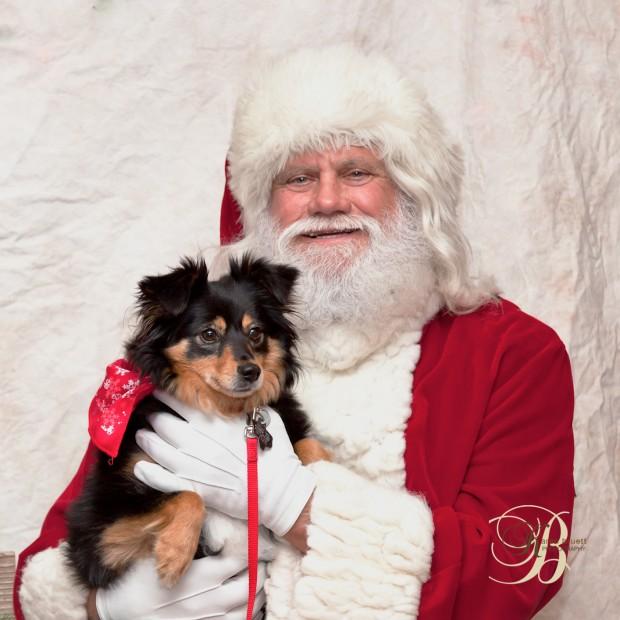 Hope Animal Clinic - Santa Visit