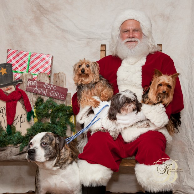 2015 Hope Animal Clinic Santa